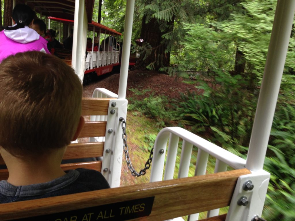 Chugging along on the Stanley Park train