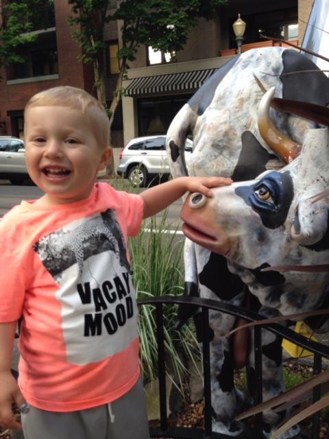 Street cows in Portland