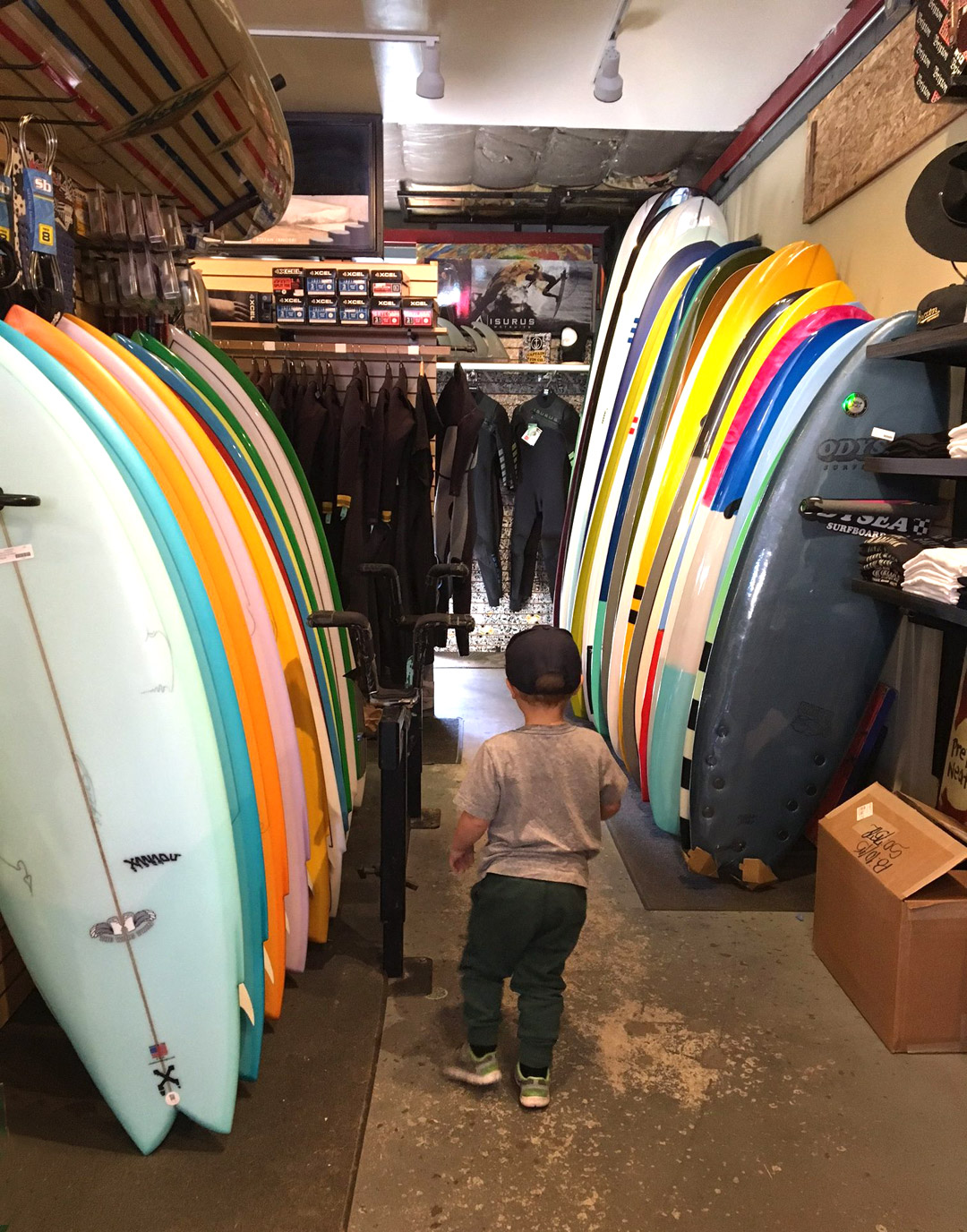 ocean beach surf shop