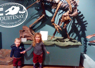 Courtenay and District Museum and Palaeontology Centre kids dinosaurs