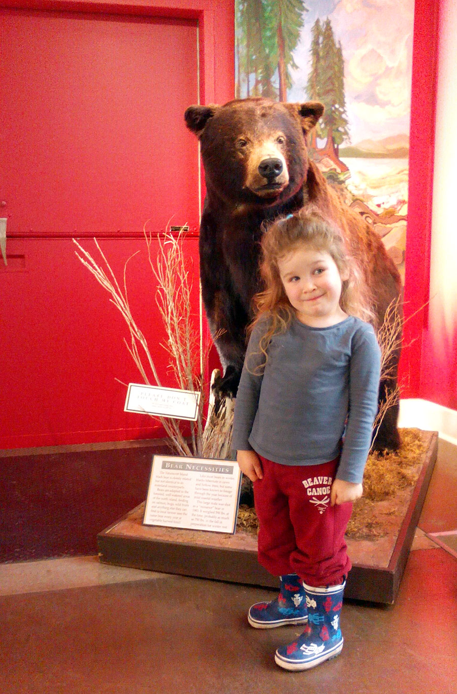 toddler with black bear at the Courtenay and District Museum and Palaeontology Centre