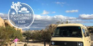 vw van camping jumbo rocks campground joshua tree national park california