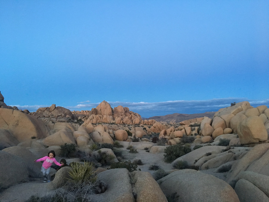 exploring jumbo rocks campground-joshua tree national park
